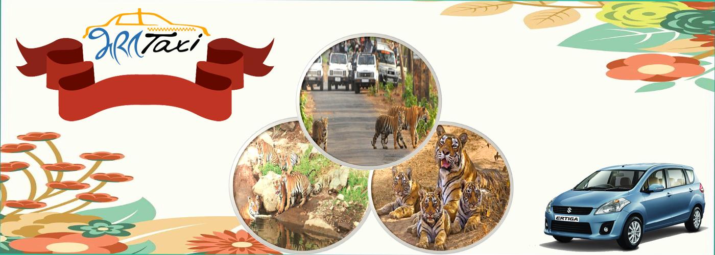 Trip to Alwar- Sarika Tiger Reserve- Bharat Taxi Alwar