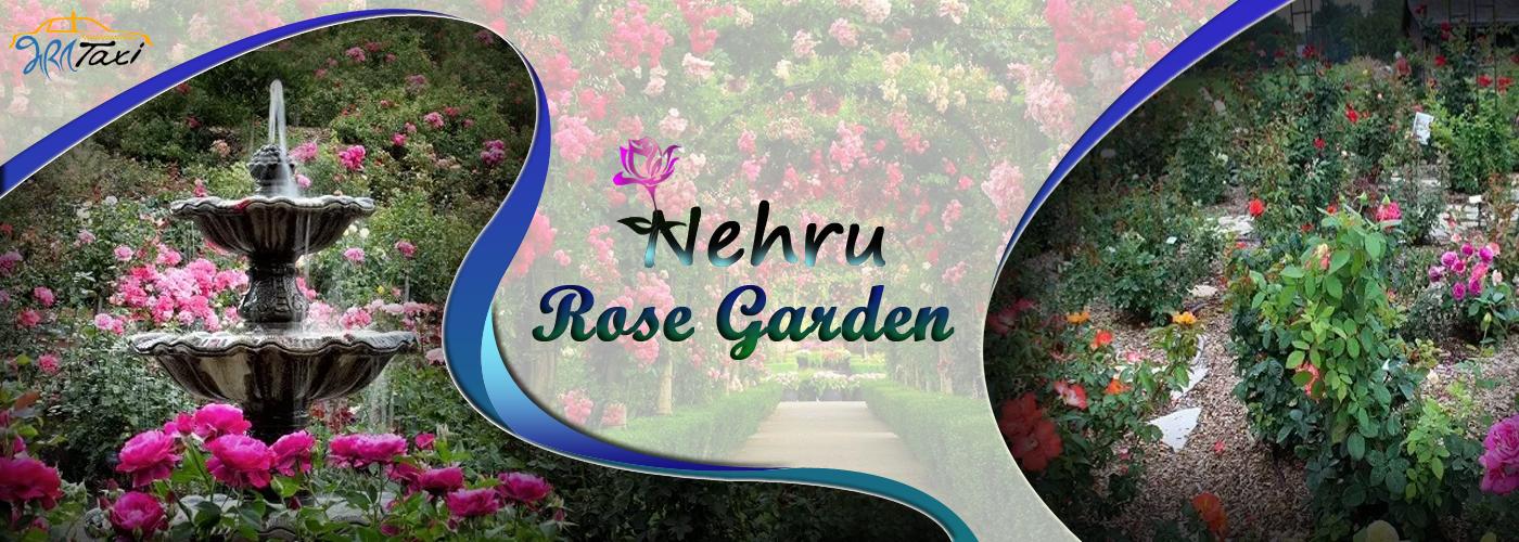 Best Places to Visit in Ludhiana- Nehru Rose Garden