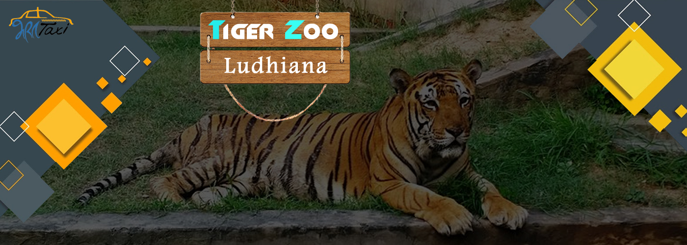 Best Places to Visit in Ludhiana- Tiger Zoo