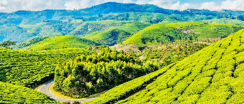 Bangalore_-_Coonoor_-_Coimbatore_Car_Hire_Package-_Bharat_Taxi.png